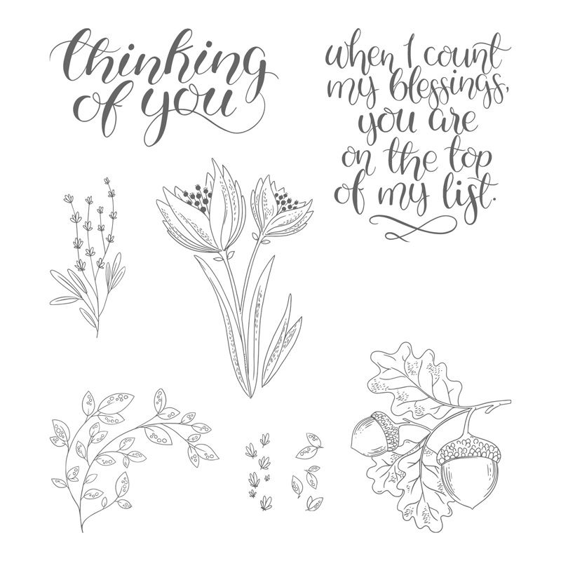 Stampin' Up! Stempelset Count My Blessings